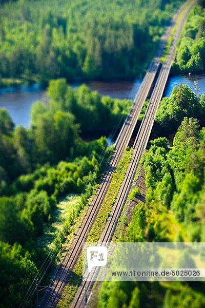Railroad durch Wald