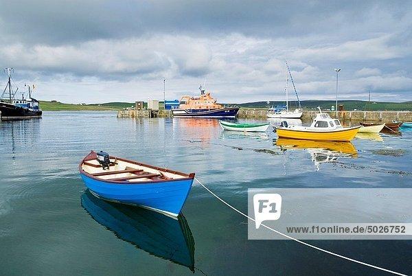 Fischereihafen  Fischerhafen  Farbaufnahme  Farbe  klein  Helligkeit  Shetlandinseln  Motorboot  Schottland