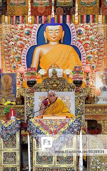 His holiness the Dalai Lama during teachings at Namgyal Monastery in Tsuglagkhang complex McLeod Ganj  Dharamsala  Himachal Pradesh state  India  Asia