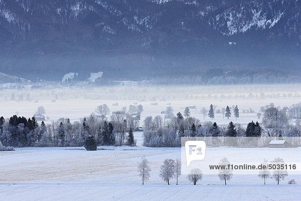 Deutschland  Bayern  Murnauer Moos  Blick auf den frostigen Morgen Deutschland, Bayern, Murnauer Moos, Blick auf den frostigen Morgen