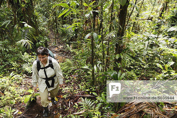Costa Rica  Las Horquetas  Rara Avis  Frau mit Rucksack im Regenwald