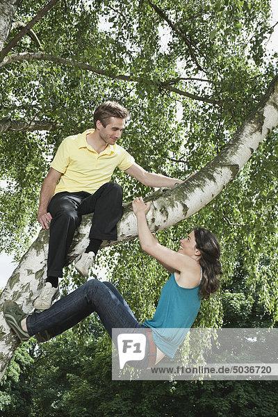 Mann auf Baum sitzend und Frau hängend