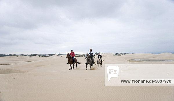 Südliches Afrika Südafrika Strand Sand reiten - Pferd Einsamkeit Düne