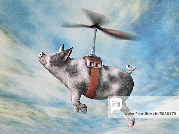 Composite fliegen Schwein in Harness befestigt  Propeller