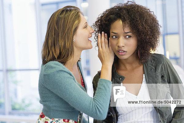 Seitenprofil einer Frau  die ihrem Freund an der Universität ins Ohr flüstert.