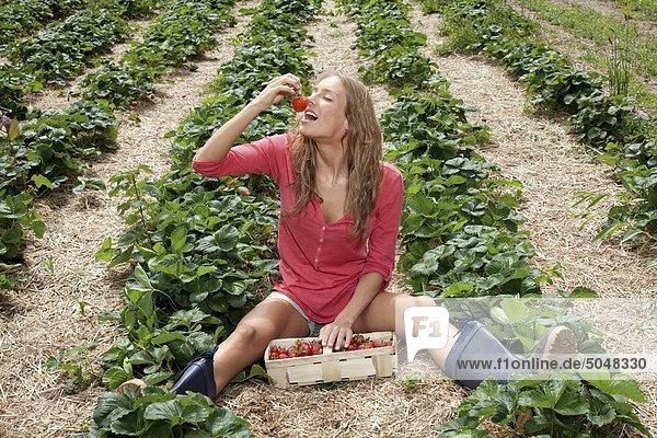 Junge Frau im Erdbeerfeld