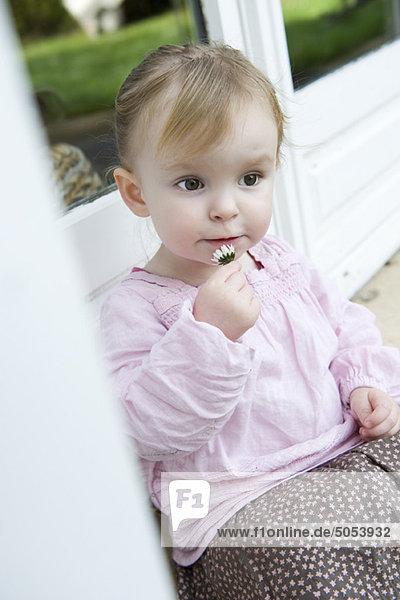 Kleinkind Mädchen mit Blume  Portrait