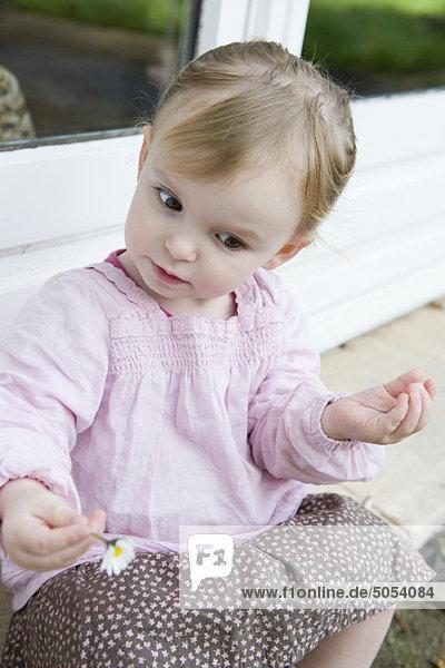 Kleinkind Mädchen hält Blume  schaut neugierig nach unten  Portrait