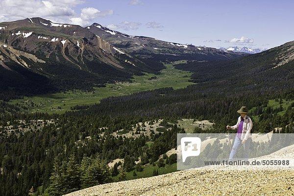 Wandern im Tweedsmuir Park British Columbia Kanada