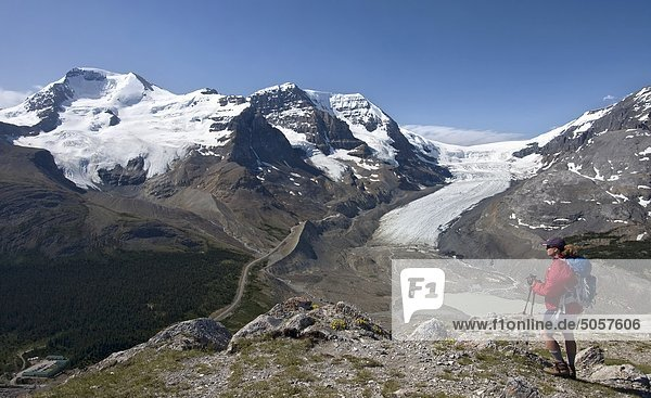 Wanderer  die in den Ansichten des Columbia-Eisfeld von Wilcox Pass  Jasper Nationalpark  Canadian Rockies  Alberta  Kanada