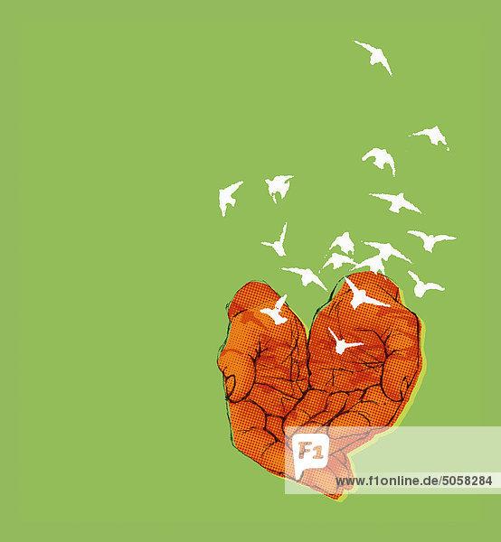Hände lassen Vogelschwarm frei Hände lassen Vogelschwarm frei