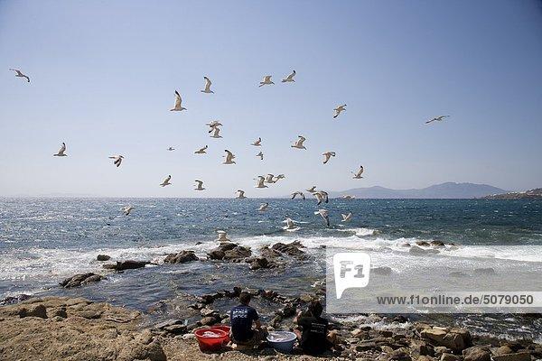 Kykladen Griechenland Mykonos
