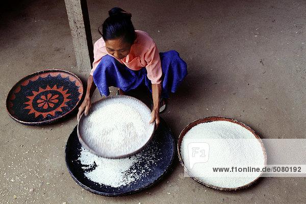 Landwirt Reinigung Reis. Bagan Myanmar (Burma)