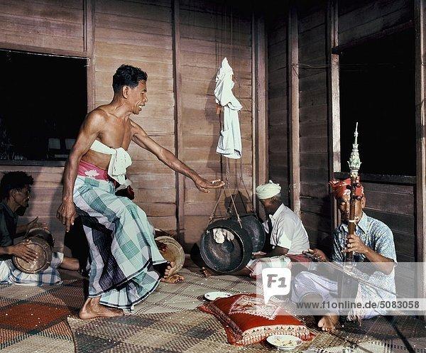 Malaiische Bomor in Malaysia