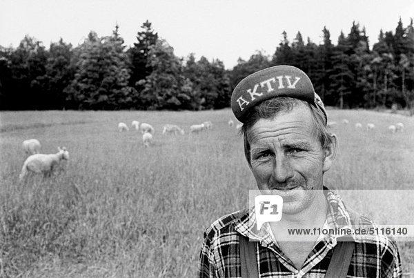 Schwedische shepherd