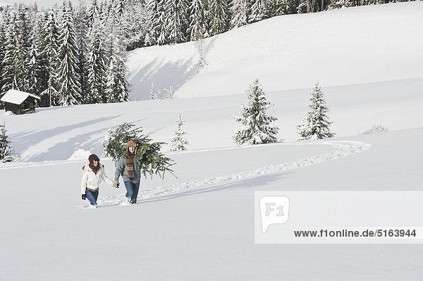 Österreich  Salzburger Land  Flachau  Junger Mann und Frau mit Weihnachtsbaum im Schnee