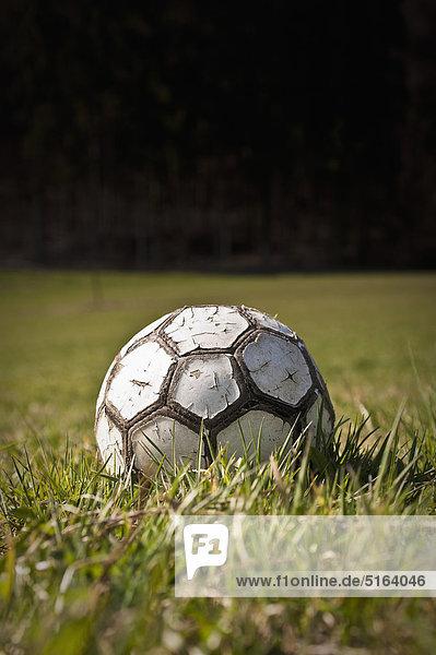 Germany  North Rhine-Westphalia  Düsseldorf  Close up of old football on grass