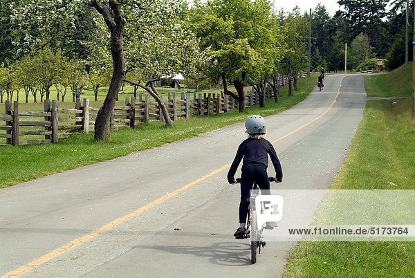 Junge - Person  Insel  Fahrrad  Rad  Kanada