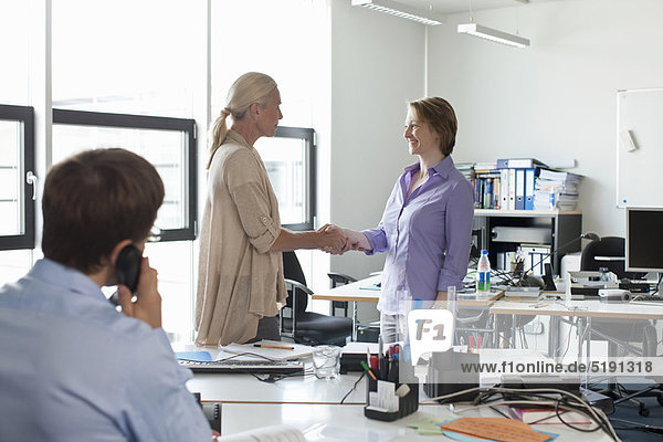 Geschäftsfrau  Büro  schütteln