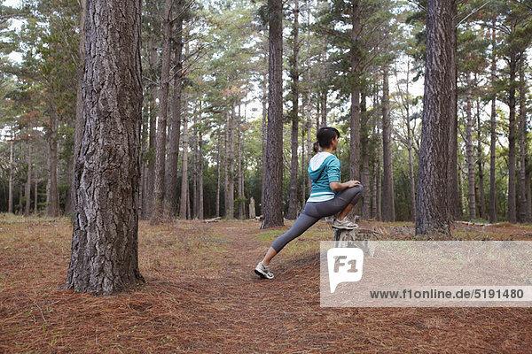 strecken  Wald  Läufer