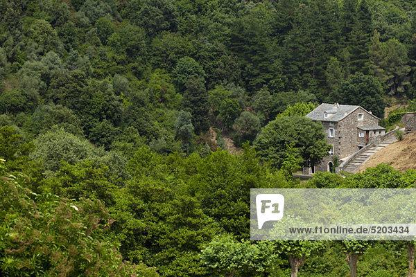 Bauernhaus  Venzolasca  Korsika  Frankreich