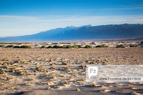 USA  California  Death Valley National Park  Mesquite Flat Sand Dunes  dawn