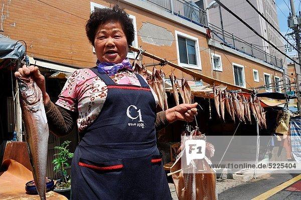 Fisch  Pisces  Frau  trocknen  Straße  vorwärts