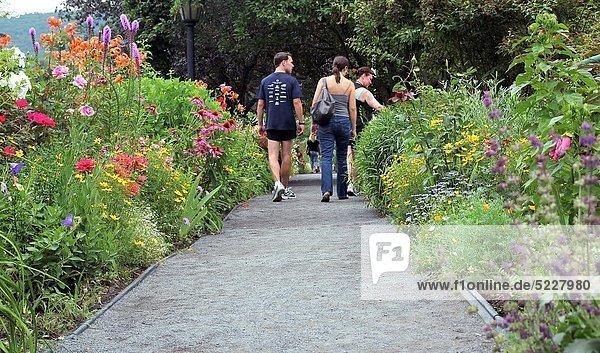 Mensch  Vereinigte Staaten von Amerika  USA  Menschen  Blume  gehen  Brücke  Massachusetts