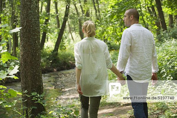 Couple walking in Wäldern  Rückansicht