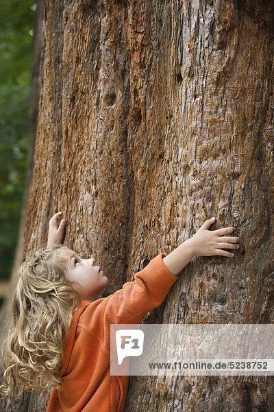 Mädchen umarmen Baum Mädchen umarmen Baum