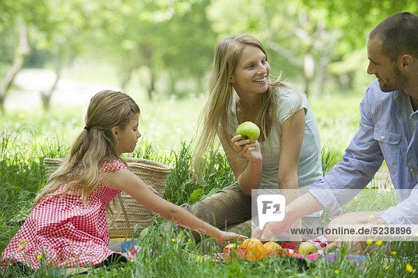 Familie haben Picknick im freien