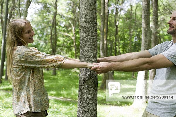 Couple Holding hands um Baumstamm