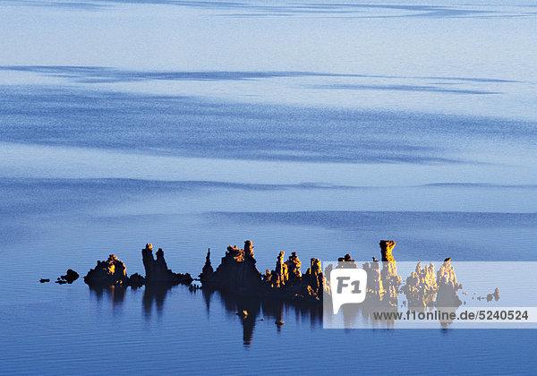 Salzablagerungen in Salzsee  Mono Lake  USA