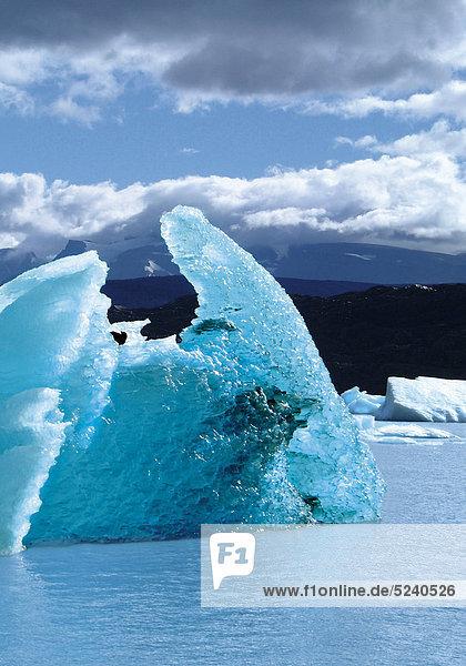 Eisscholle treibt im Meer  Speggazini-Gletscher  Argentinien