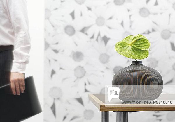 Büro  Vase mit großer grüner Aronstabblüte  Person teilweise im Hgr