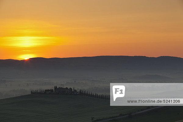 Italien  Toskana  Kreta  San Quirico d'Orcia  Blick auf Bauernhof mit Zypressen bei Sonnenaufgang