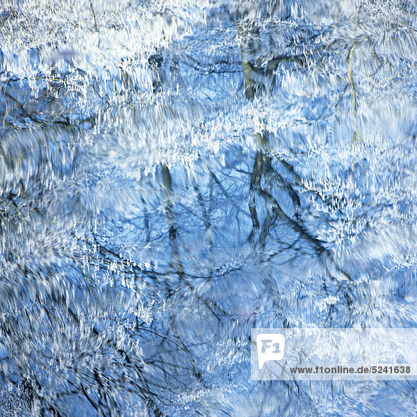 Bäume mit Rauhreif spiegeln sich im Wasser