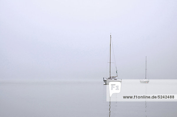 Deutschland  Bayern  Ammersee  Blick auf Segelboote im Nebel