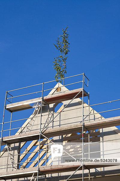 Deutschland  Baden-Württemberg  Stuttgart  Ansicht Gerüstbau mit Richtbaum