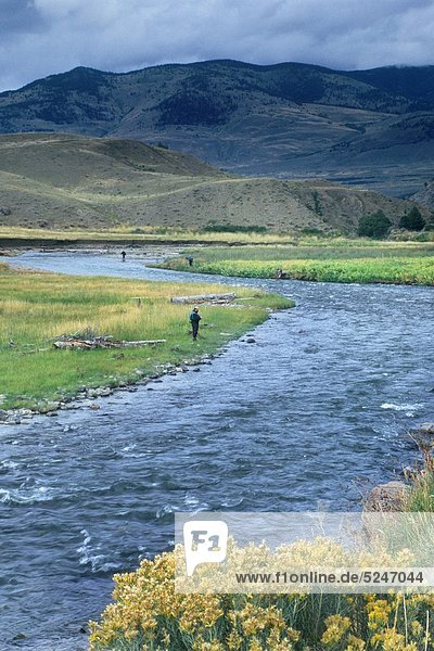 Quelle  Wärme  Fluss  Geographie  Yellowstone Nationalpark  Fischer  Mammut  Wyoming