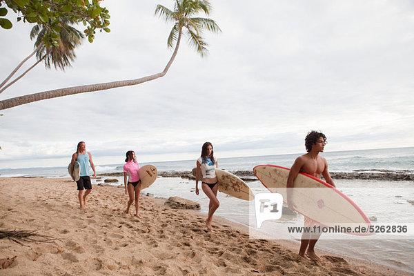 Vier junge Freunde  die die Surfbretter am Strand