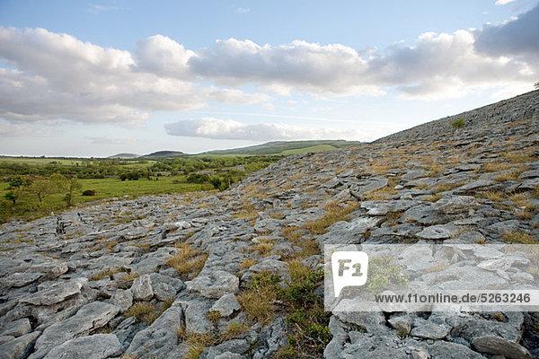 The Burren  Co. Clare  Irland