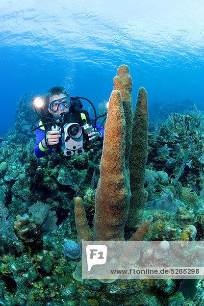 Videograf am Korallenriff