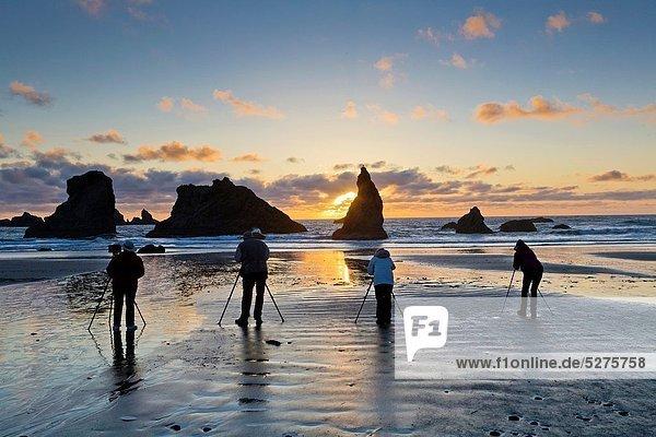 Strand  Sonnenuntergang  Küste  Insel  Fotograf  Pazifischer Ozean  Pazifik  Stiller Ozean  Großer Ozean  Einheit  zeigen  sprechen  Flucht  Coquille  Oregon  Bandon  Oregon  Wildtier