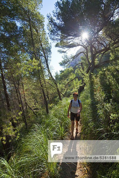 Frau wandert im Wald  Alcudia  Mallorca  Spanien