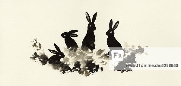 Kaninchen sitzen zusammen im Gras