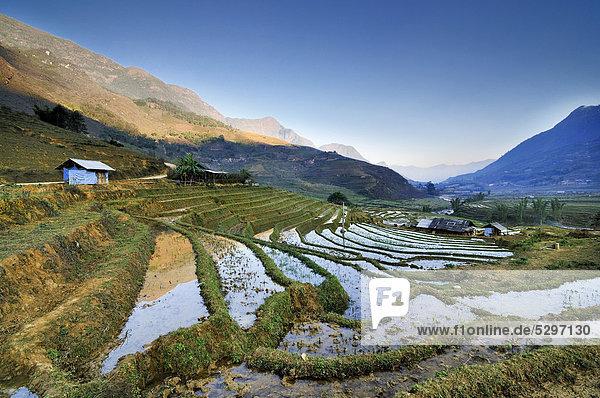 Bew‰sserte Reisterrassen  Reisfelder bei Sapa oder Sa Pa  Provinz Lao Cai  Nordvietnam  Vietnam  S¸dostasien  Asien