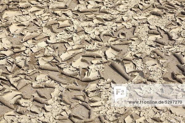 Ausgetrockneter Sandboden