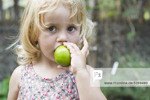 Kleines Mädchen beißt in Limette Kleines Mädchen beißt in Limette