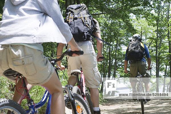 Mountainbiker im Wald  Rückansicht